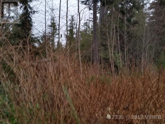 Lt 11 Bamfield S RoadBamfield, British Columbia  V0R 1L6 - Photo 6 - 417335