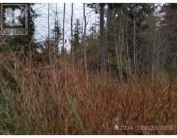 LT 10 BAMFIELD S ROAD, bamfield, British Columbia