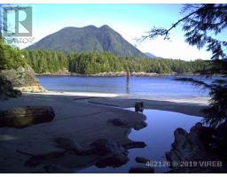 LT 2 CATFACE, tofino, British Columbia