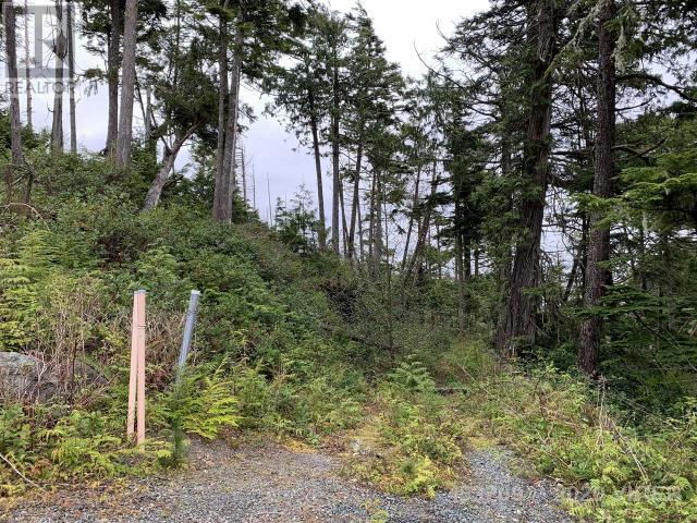 854 Marine Drive, Ucluelet, British Columbia  V0R 3A0 - Photo 6 - 453209