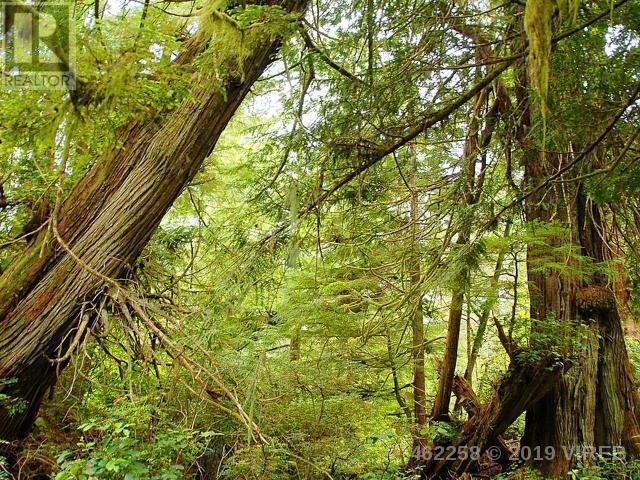 1064 Pacific Rim Hwy, Tofino, British Columbia  V0R 2Z0 - Photo 34 - 462258
