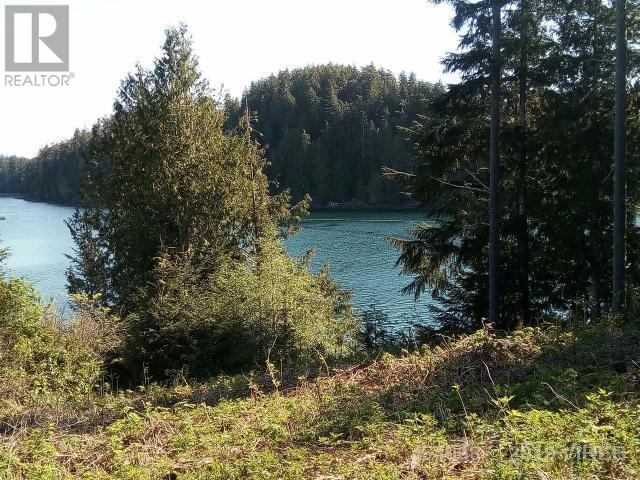 Lt F Michelsens Lane, Bamfield, British Columbia V0R 1B0 - Photo 6 - 454068