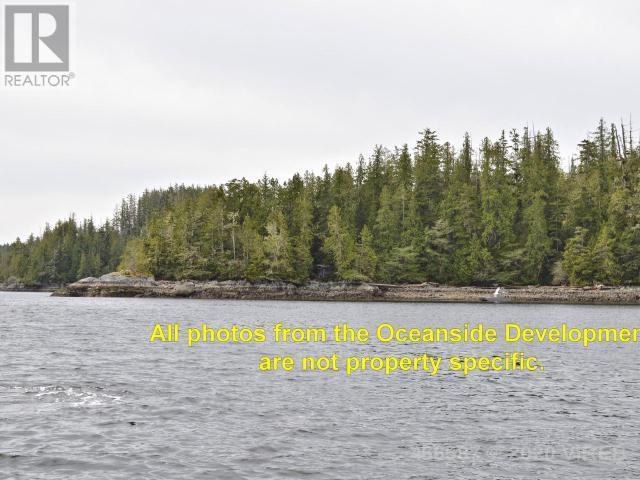 Lt 9 Hot Springs Oceanside, Tofino, British Columbia  V0R 2Z0 - Photo 6 - 466587