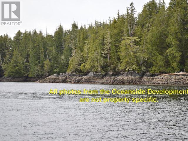 Lt 9 Hot Springs Oceanside, Tofino, British Columbia  V0R 2Z0 - Photo 7 - 466587