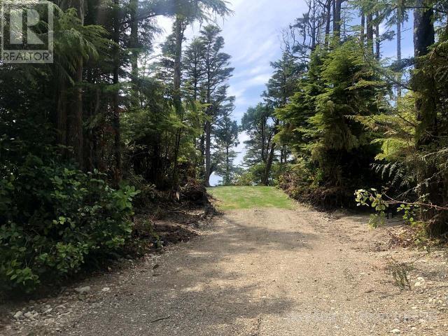 736 Odyssey Lane, Ucluelet, British Columbia  V0R 3A0 - Photo 10 - 461602