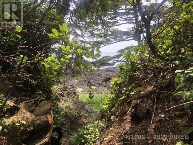 736 Odyssey Lane, Ucluelet, British Columbia  V0R 3A0 - Photo 14 - 461602