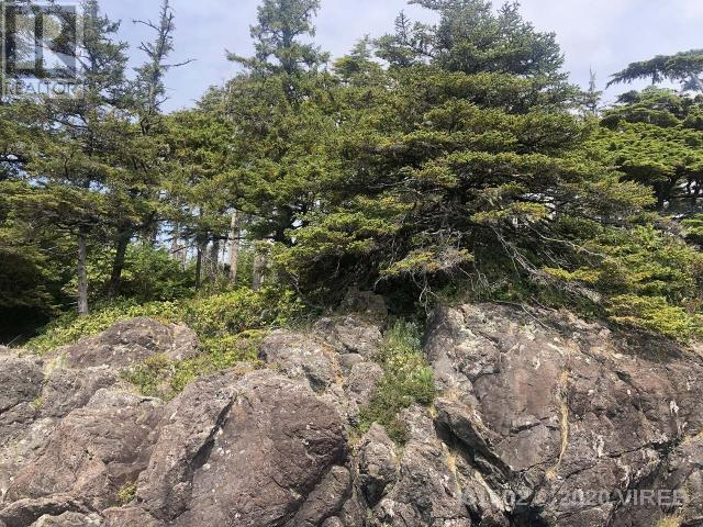 736 Odyssey Lane, Ucluelet, British Columbia  V0R 3A0 - Photo 18 - 461602