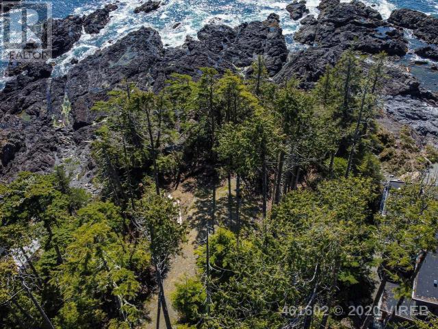 736 Odyssey Lane, Ucluelet, British Columbia  V0R 3A0 - Photo 2 - 461602