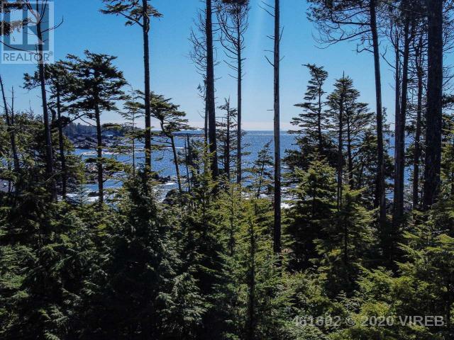 736 Odyssey Lane, Ucluelet, British Columbia  V0R 3A0 - Photo 5 - 461602