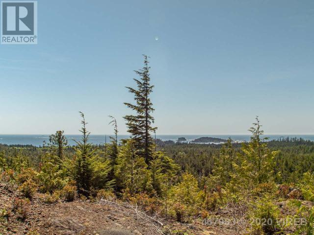 Lt 13 Uplands Way, Ucluelet, British Columbia V0R 3A0 - Photo 10 - 467983