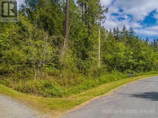 10335 Bishop Drive, Port Alberni, British Columbia V9Y 9A6 - Photo 5 - 468800